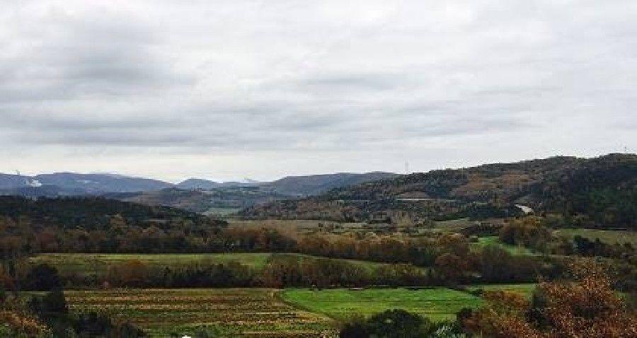 Terreno agricolo a Monteverdi Marittimo (5/5)