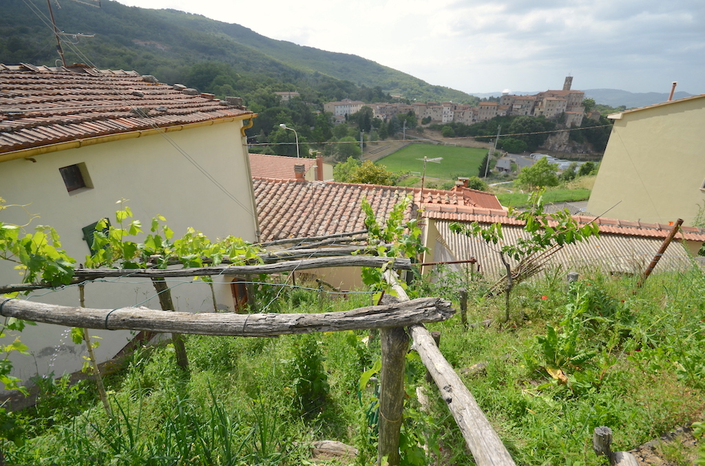 Sasso Pisano, independent flat with vineyard and district heating